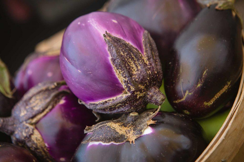Laurie-Cusinato--purple-eggplant